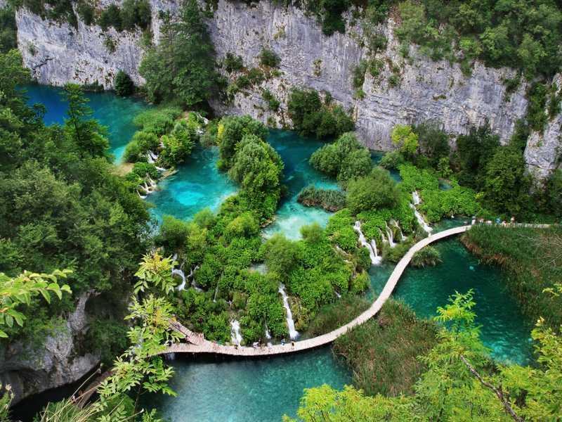 Flora in Kroatien
