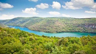 Der Limski Fjord in Istrien